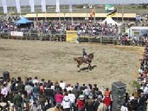 Feria Agroganadera
