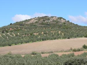 Cerro de Pedro Benitez