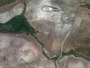 Arroyo de la Cañada Estepilla