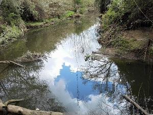 Arroyo de Pilas