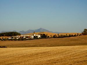 Hacienda Algauciles Bajos