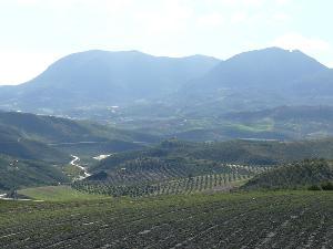 Sierra del Tablón