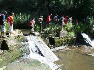 Paisaje Protegido Corredor Verde del Guadiamar