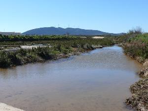 Arroyo Salinoso