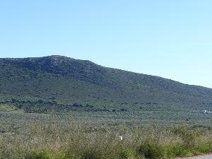 Cerro del Guichón