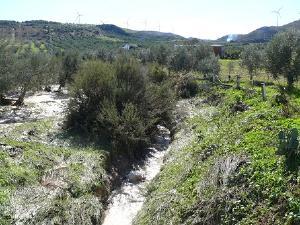 Arroyo de la Fuente Mala