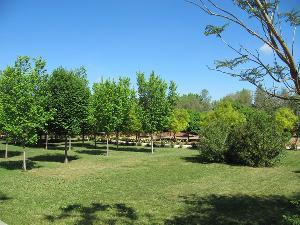 Parque Municipal de Marinaleda
