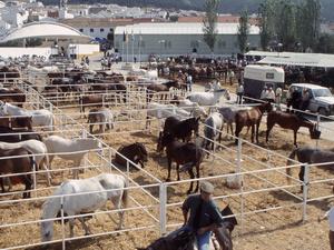Feria Agroturística y Ganadera