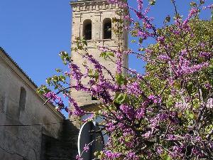 Iglesia de Nuestra Señora de la Oliva